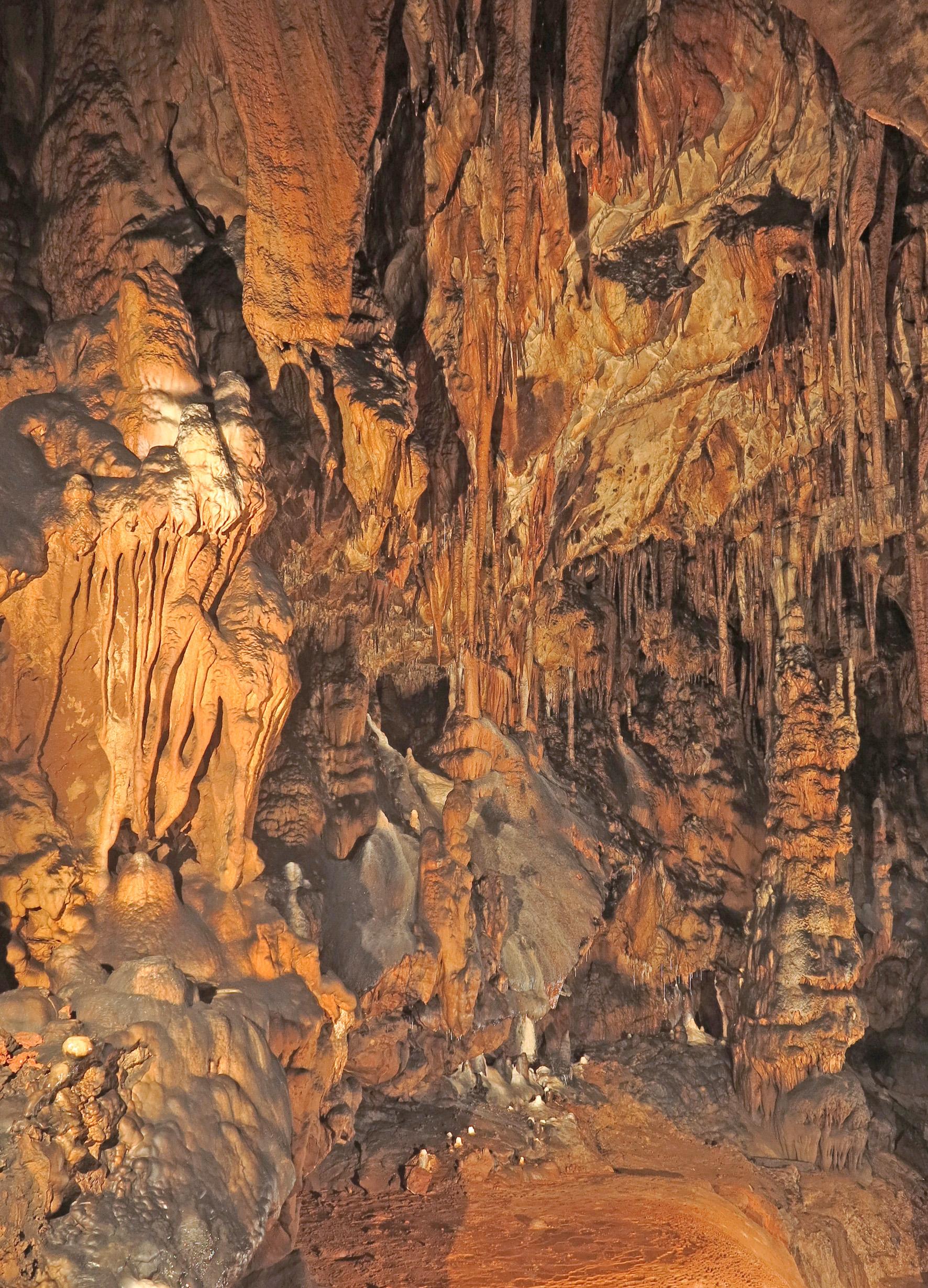 Különleges karbonát-kiválasztó baktériumok a Baradla-barlangból